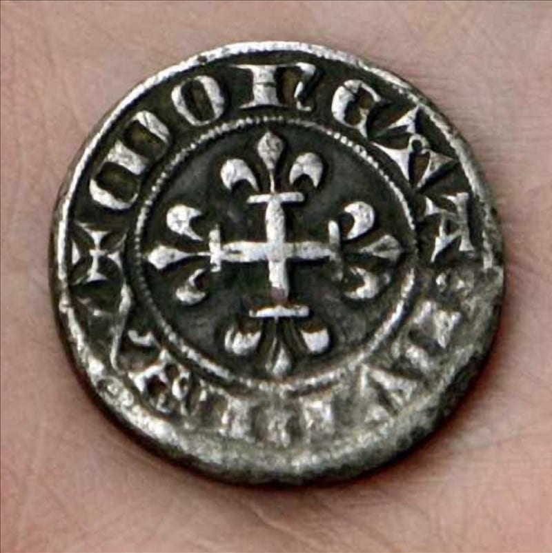Ordinary Looking Coin Found In Suburban Backyard Puts Home ...